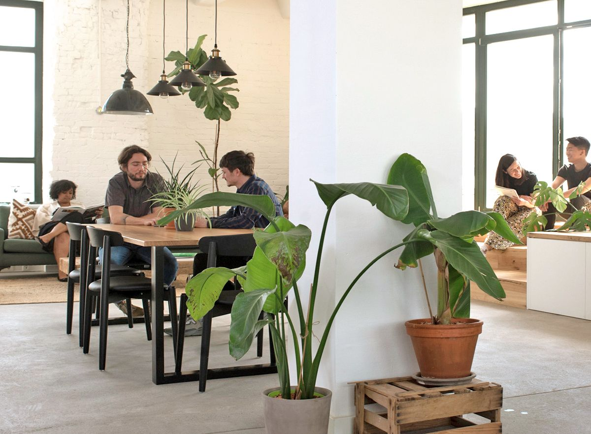 The office consists of social spaces where team members meet, interact or take a break from their desks