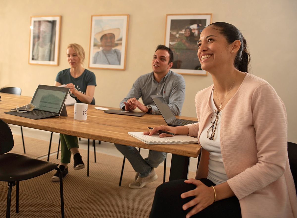 Team members meeting in a warmly designed meeting room